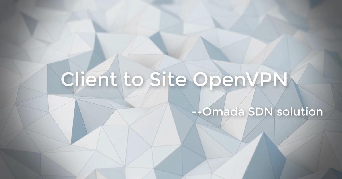 Client to Site Open VPN – Solução SDN da Omada